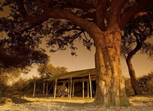 Kigelia Camp exclusive lodge