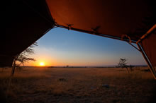 serengeti mara camp sunrise